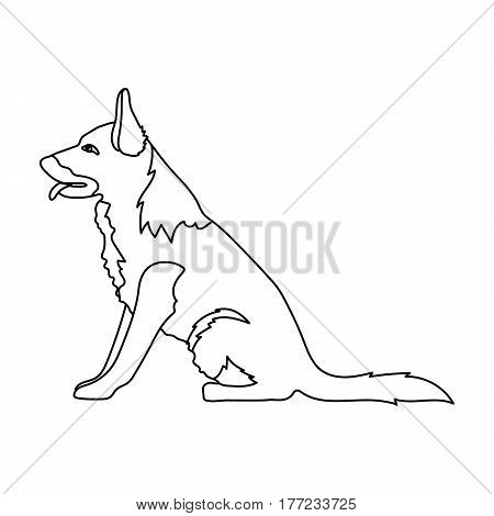 Police dog for detaining criminals. Trained shepherd for prison.Prison single icon in outline style vector symbol stock web illustration.