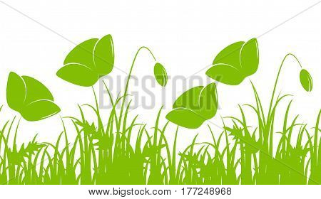 vector seamless border with corn poppies in grass isolated on white background