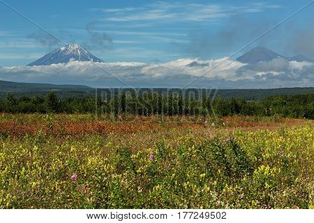 Summer view of the Koryaksky and Avachinsky volcanoes shrouded in clouds.