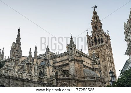 Sevilla (Andalucia Spain): the historic cathedral at evening