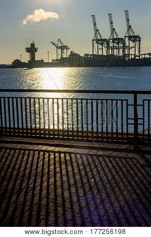 Sea port. Landscape with sea and loading cranes at dawn. Sunny path on water. Beautiful silhouettes and shadows