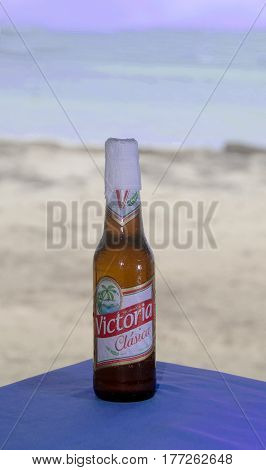 CORN ISLANDNICARAGUA-JANUARY 15: A bottle of the national beer of Victoria Clasica is shown as served with napkin wrapped around end with beach background Big Corn Island Nicaragua Central America on January 15 2017.