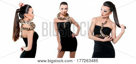 Fearless beauty. Composite image of 3 shots of a stunning sexy young Asian female wearing little black dress holding a real snake isolated on white fashion sexuality hot seductive dangerous animal