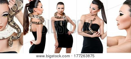 Snake lover. Collage of studio shots of an attractive Asian woman in a black dress posing with a real snake isolated on white reptile danger sexuality feminine seduction fearless brave animals concept poster