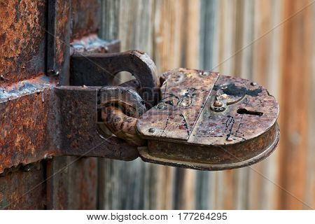 Doors locked with old rusted padlock and spider in the keyhole