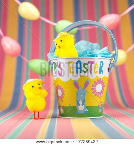 Two Easter Chicks And Colourful Enamel Bucket