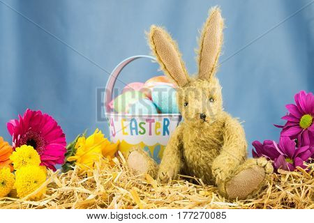 Cute Happy Easter Day Scene With Rabbit. Copy Space.