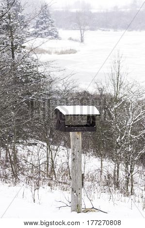 Wooden handmade bird house in a vertical winter landscape snow trees and frozen lake