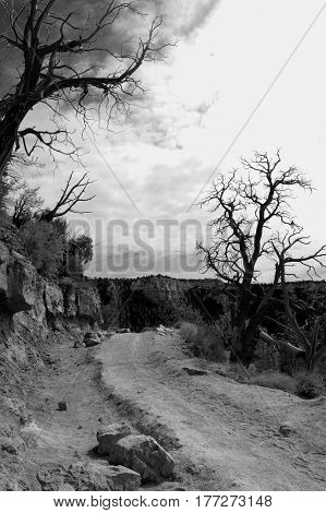 A creepy picture of a canyon path