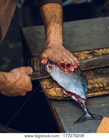 Fresh Raw Tuna Fish On Cutting Board