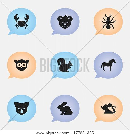 Set Of 9 Editable Nature Icons. Includes Symbols Such As Lobster, Rat, Bunny And More. Can Be Used For Web, Mobile, UI And Infographic Design.