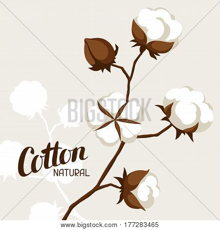 Background with cotton bolls and branches. Stylized illustration.