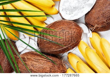 Coconuts And Bananas With Leaf Of Palm