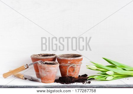 Garden Tools And Tulips On The White Wooden Shelf