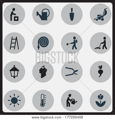 Set Of 16 Editable Agriculture Icons. Includes Symbols Such As Radish, Water The Flower, Streetlight And More. Can Be Used For Web, Mobile, UI And Infographic Design.