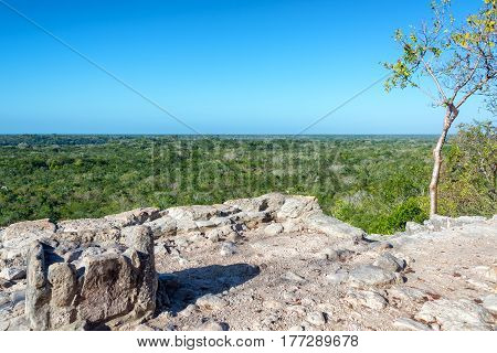 View From The Coba Pyramid