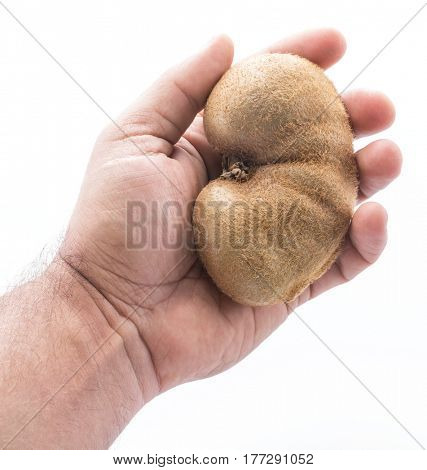 Kidney like kiwifruit in man's hand. Isolated on a white background.
