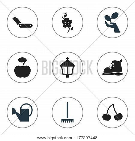 Set Of 9 Editable Planting Icons. Includes Symbols Such As Footwear, Streetlight, Berry And More. Can Be Used For Web, Mobile, UI And Infographic Design.