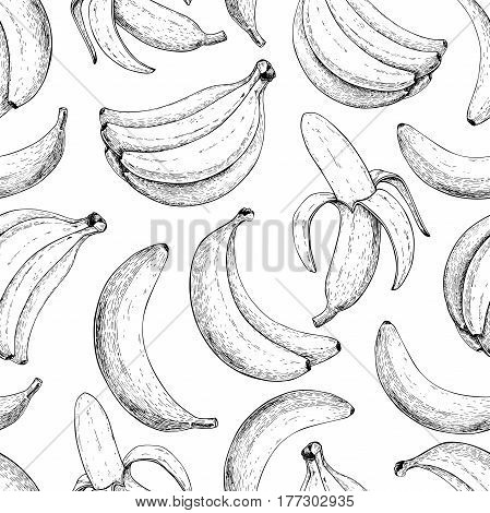 Banana vector seamless pattern. Isolated hand drawn bunch and peel banana Summer fruit engraved style illustration. Detailed vegetarian food. Great for label, poster, print