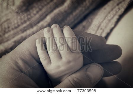 Newborn baby hand in fathers hands, black and white