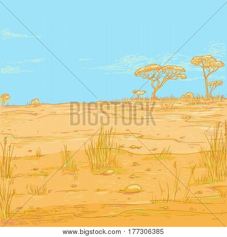 Vector color sketch landscape illustration. African desert arid savannah and a high blue sky with light white clouds. On a distant horizon, trees and shrubs are visible