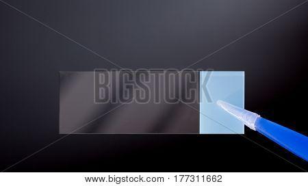 Microscope slide in tweezers