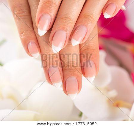 Beautiful woman's nails, french manicure, close-up.