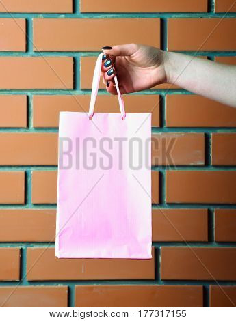 Light Pink Shopping Bag In Female Hand On Brick Wall