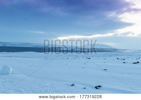 Beautiful Winter Landscape Windy And Covered Snow In Iceland