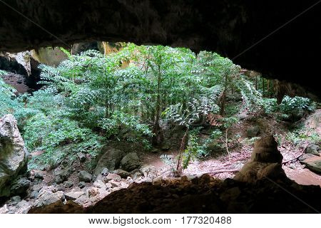 View into the a cave at Khao Sam Roi Yot national Park Thailand