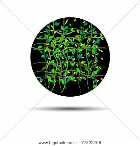 green vector background clean nature eco summer foliage natural ecology
