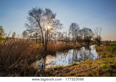 Spring nature for print. Outdoor smal lake In Belarus