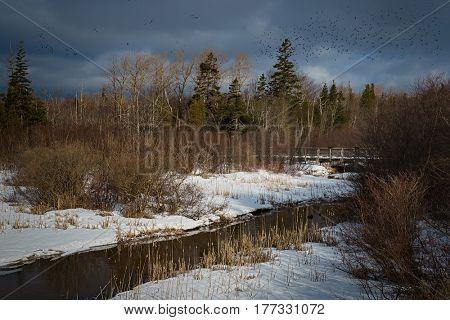 Winter landscape in rural Prince Edward Island, Canada.