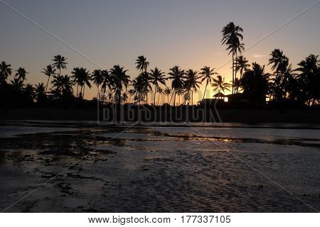 Sunset in Praia do Forte - Bahia, Brazil