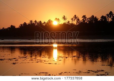 Sunset in Praia do Forte - Bahia, Brazil