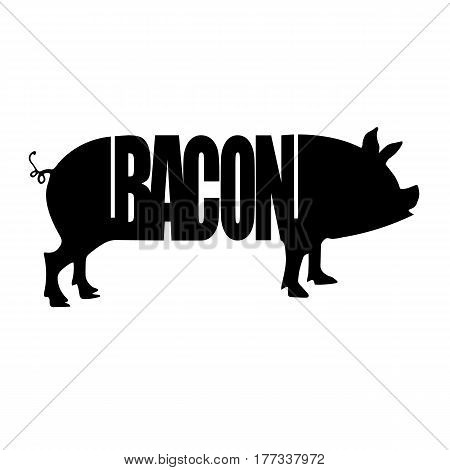 Cut of meat set. Vintage typography hand drawn. Vector illustration. Pork pig bacon meat