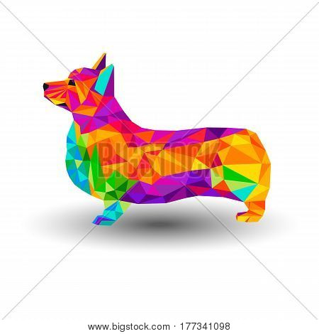 vector welsh dog animal illustration pet ears