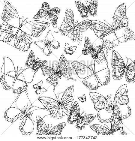 vector butterfly insect art white color fly graphic
