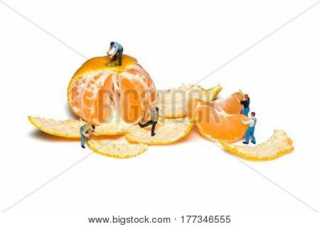 Miniature workers remove the peel mandarins. Teamwork. Tangerines isolated. Little peoples pare fruit.