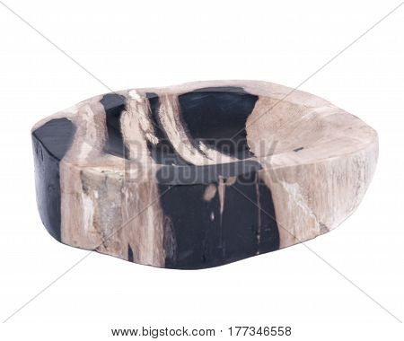 Piece of petrified wood isolated on white background
