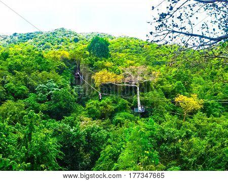 Woman going on a jungle zipline adventure at Antigua rainforest