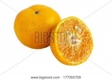 Ripe oranges isolated on white background. Orange in a cut. objects with clipping paths.