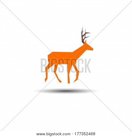 bio doe morning horns hooves legs structure sharp nature wild elk
