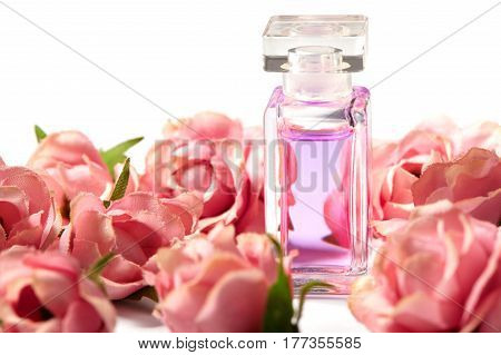 Perfume bottle in pink flower roses. Spring background with luxury aroma parfume. Beauty cosmetic fresh aromatic