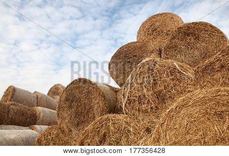 Hay stored bales full frame