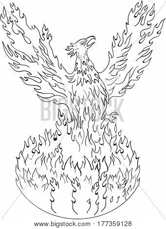 Drawing sketch style illustration of a phoenix rising up from fiery flames wings raised for flight done in black and white set on isolated white background.