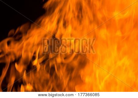 Orange fire flames on a black background