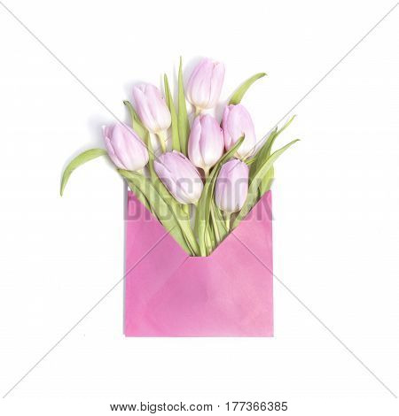Pink tulip flowers in envelope on white background
