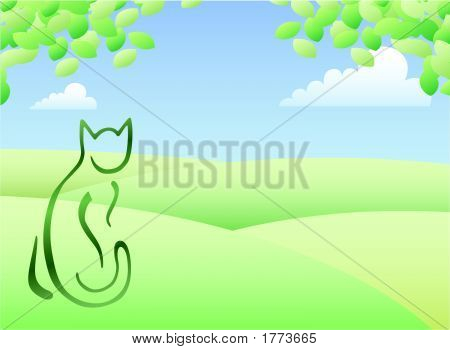 Cat- On Green Hills