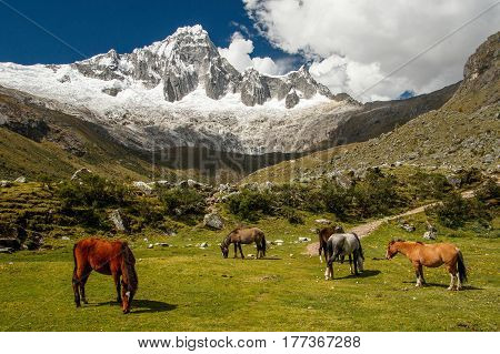 Santa Cruz trek in Cordillera Blanca, in Hauscaran NP, in Peru - one of the most beautifull hiking trails on the world